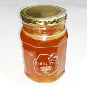 Miel Pura Multifloral Pahuilmo – 1 Kilo